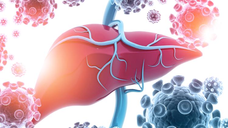 În anul 2020 au fost înregistrate mai puține cazuri de infectare cu HEPATITĂ în comparație cu anul 2019