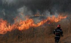 Haos în Turcia, Grecia și Italia: 8 morți. Turiști și localnici – evacuați din calea flăcărilor violente