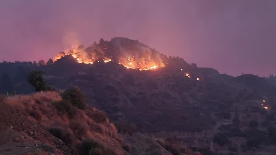 FOTO, VIDEO Incendiu puternic în CIPRU. PATRU persoane au MURIT, iar autoritățile cer AJUTOR țărilor vecine