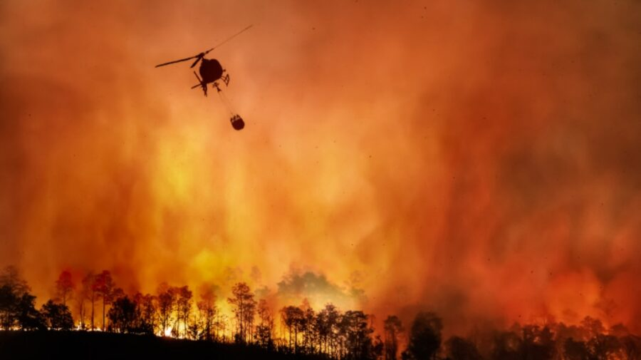 Știința trebuie să îmbunătățească predicțiile climatice! Incendiile și inundațiile din lume nu au putut fi anticipate