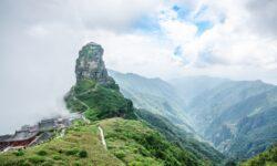 10 noi specii de păianjen și una de plantă au fost descoperite într-un sit UNESCO din China