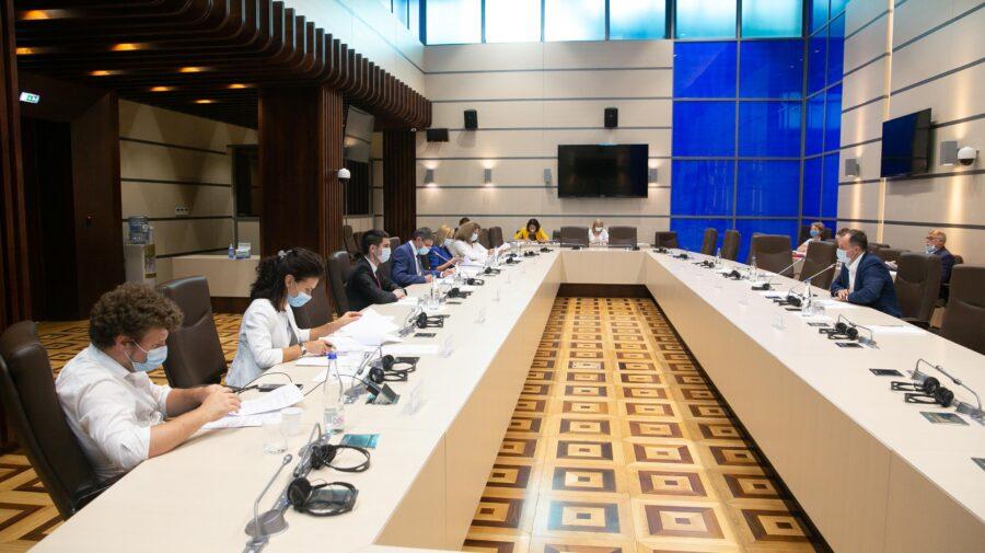 DOC Două proiecte de lege, votate în prima lectură, scoase la discuții lărgite cu societatea civilă