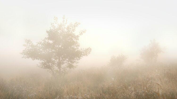 Ceață în toată republica! Ce vreme prognozează meteorologii pe parcursul zilei