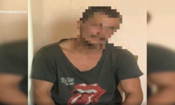 VIDEO În timp ce se afla în arest pentru furt, polițiștii au găsit în curtea casei plante de cânepă. Ce ZICE bărbatul