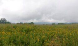 METEO: S-a făcut dimineața, dar e încă întuneric! Joi, în Moldova, s-a răcit până la +15 grade Celsius