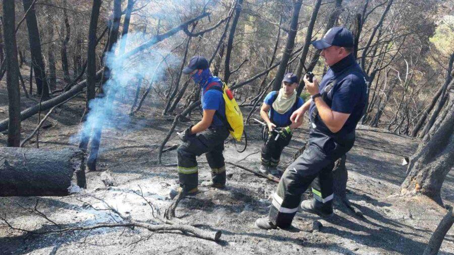 FOTO Continuă misiunea pompierilor moldoveni în Grecia. Au reușit să salveze animale din zona de risc