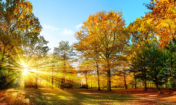 Prognoza meteo pentru septembrie. Cum va fi vremea în prima zi de toamnă