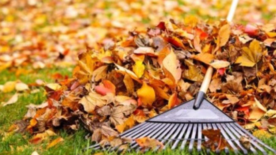 Campania de salubrizare de toamnă începe în municipiul Chișinău. Va fi lansat un program de compostare a deșeurilor
