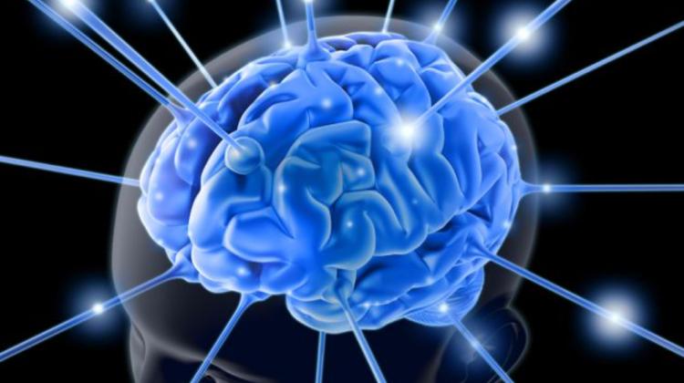 """Incredibil! Cercetătorii vor să """"inunde"""" creierul uman cu microcipuri. Ar putea trata epilepsia"""