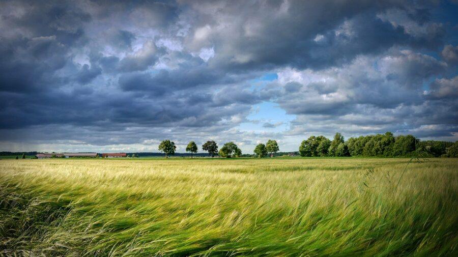 Alertă în Moldova! Meteorologii anunță COD GALBEN de VÂNT