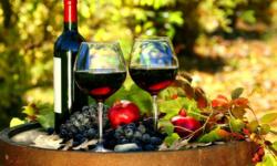 Comunitatea vitivinicolă din trei țări, într-o conferință comună. S-a discutat și despre exportul vinului din Moldova