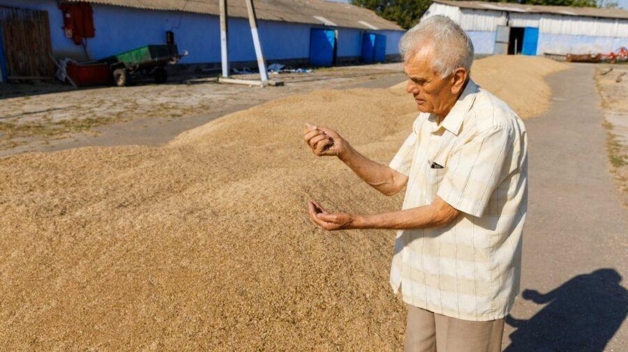 FOTO Vârsta e doar o cifră! Află povestea lui Nicolae Micu, ambasador al agriculturii organice