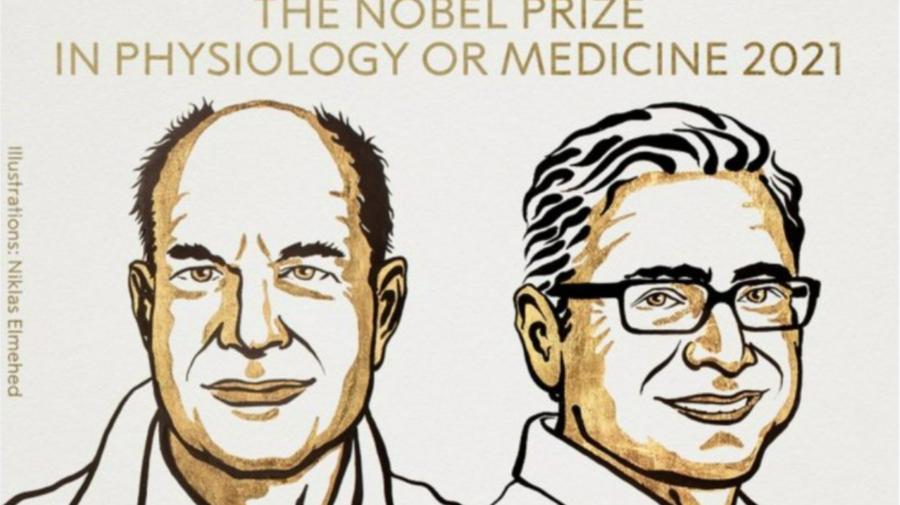 Doi cercetători americani au câştigat premiul Nobel pentru medicină 2021. Ce descoperire au făcut