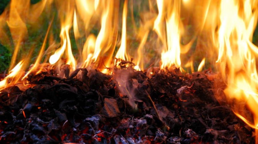AMENZI usturătoare pentru persoanele care dau foc frunzelor! Specialiștii atenționează și despre pericole