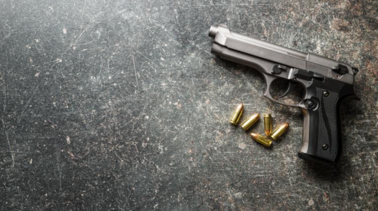 Groaznic! Un copil și-a împușcat mama în timp ce femeia se afla într-o conferință online