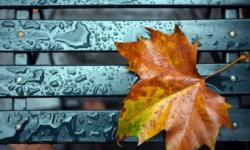 METEO, 13 octombrie. Ploi în toată țara! Ce temperaturi prognozează meteorologii pentru astăzi
