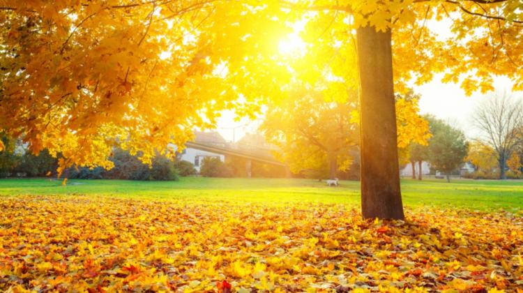 Vom fi treziți de razele solare sau de stropii de ploaie? Prognoza meteo pentru weekend
